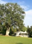 Pine Mountain Lake - Golf House