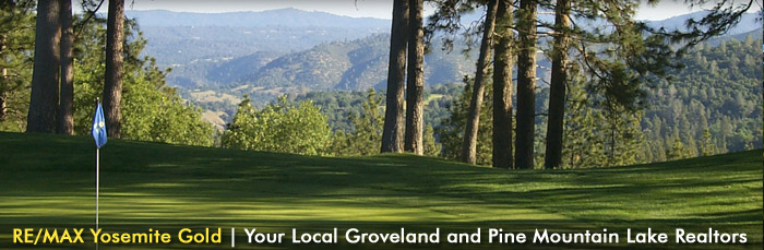 RE/MAX Yosemite Gold | Your Local Groveland and Pine Mountain Lake Realtors